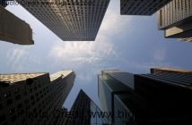 startups to work for in new york